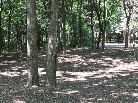 Oak Brook Park District Disc Golf