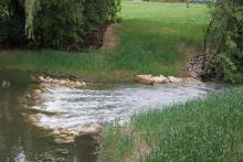 Oak Brook Park District removes low-head dam on Ginger Creek and works to improve water quality on Salt Creek Watershed